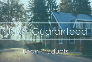 USDA Guaranteed Loan